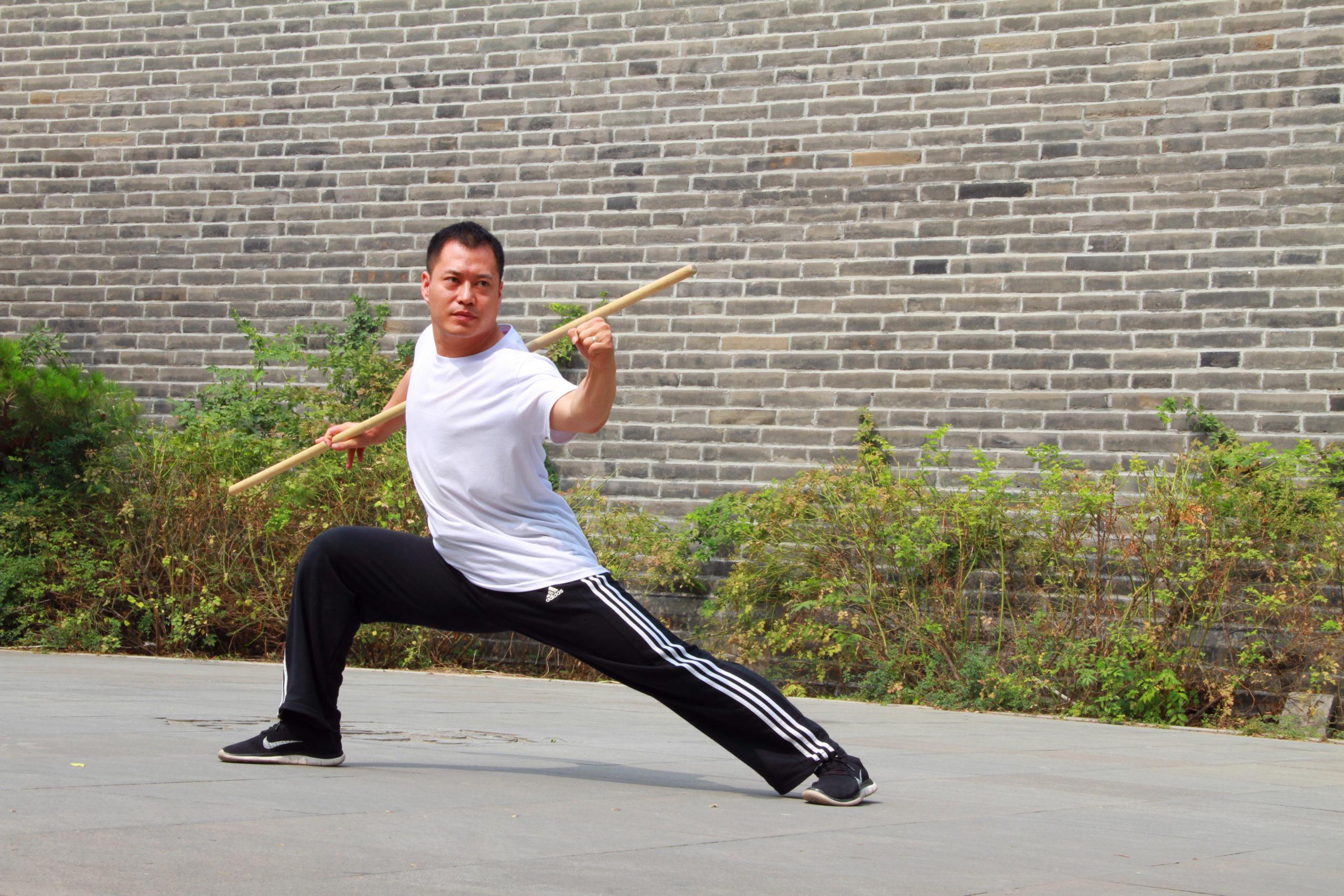 Read more about the article Il Ba Ji Quan della An Wushu Kung Fu arriva in Italia : una Tradizione che continua