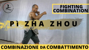 La Shadow Boxing nel Baji Quan #1